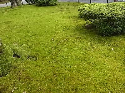 shukusho-RIMG2287.jpg