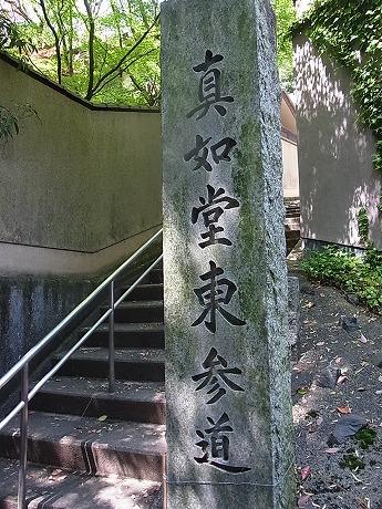 shukusho-RIMG2421.jpg