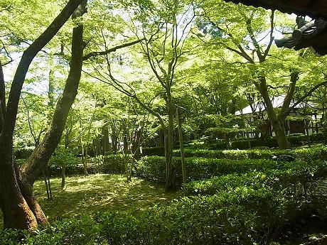 shukusho-RIMG2437.jpg