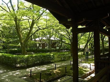shukusho-RIMG2447.jpg