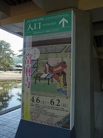 shukusho-RIMG2472.jpg
