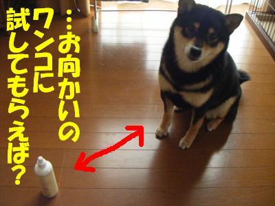 mimisouji3.jpg