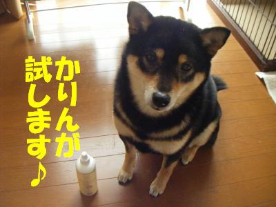 mimisouji4.jpg