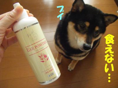 mimisouji5.jpg