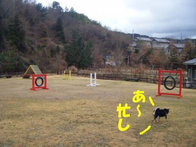 wakayama23.jpg