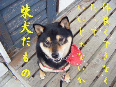 wakayama38.jpg