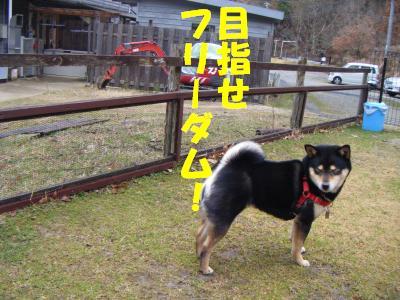wakayama45.jpg