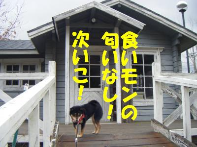 wakayama47.jpg