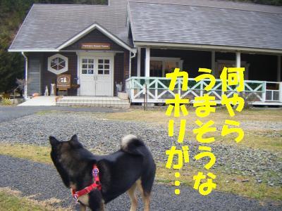 wakayama48.jpg