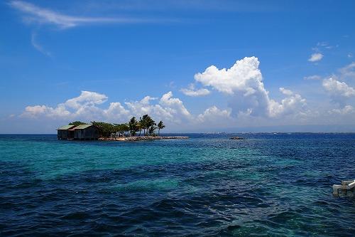 2オランゴ島 (2)
