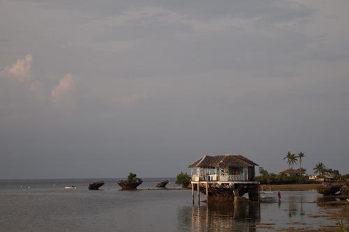 2オランゴ島 (9)