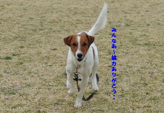 DSC_000560.jpg