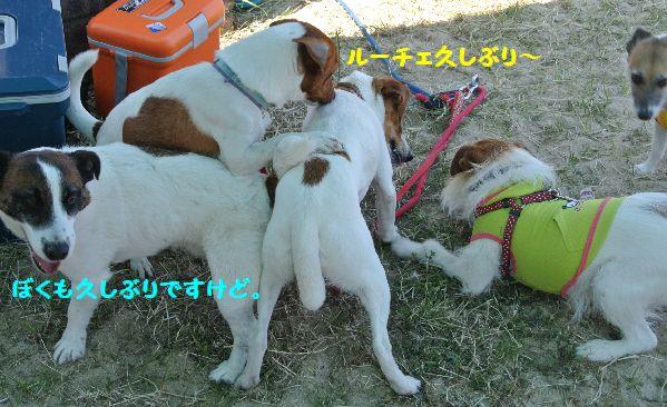 DSC_000879.jpg
