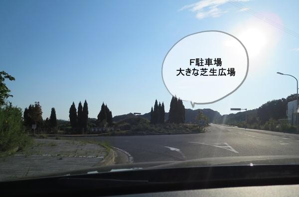 IMG_020169.jpg