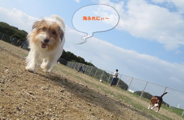 IMG_020809.jpg
