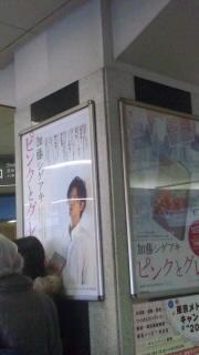 渋谷ピングレ2