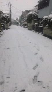道路の雪12229