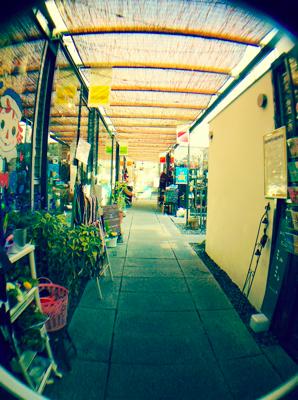 写真 2014-01-29 4 58 29th_