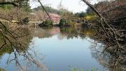 水の風景1