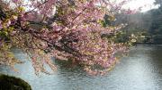 水の風景3