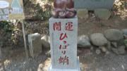高尾-陣馬5