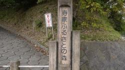 20141102寺家1