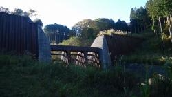 20141115_金時山ー明神ヶ岳4