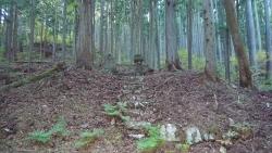 20141115_金時山ー明神ヶ岳3
