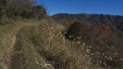 20141115_金時山ー明神ヶ岳12