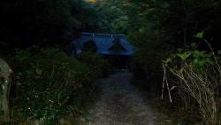 20141115_金時山ー明神ヶ岳24