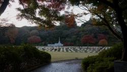 20141207_英連邦墓地1