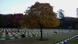 20141207_英連邦墓地2