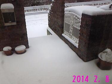 snow2014