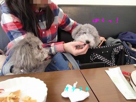 018 mo ぱくっ