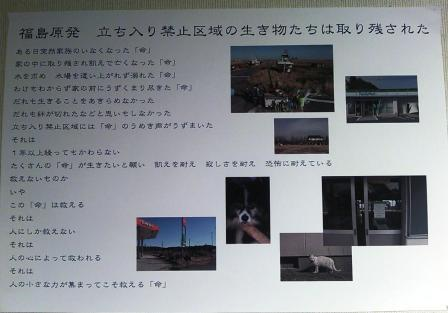 20120723_220847.jpg