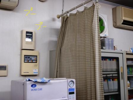 P4110021.jpg