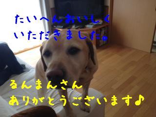 1_20130507141209.jpg