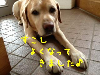 ___20130423140228.jpg