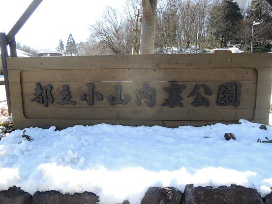 130119-01oyama01.jpg