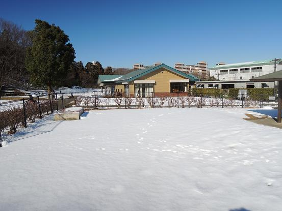 130119-03oyama03.jpg