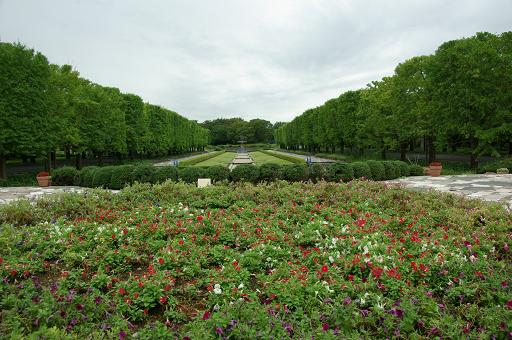 110820A-03shouwa kinen park view