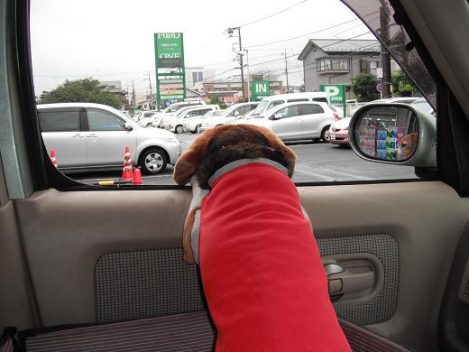 110821-08P chara on car