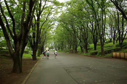 110827-01tsuruma park