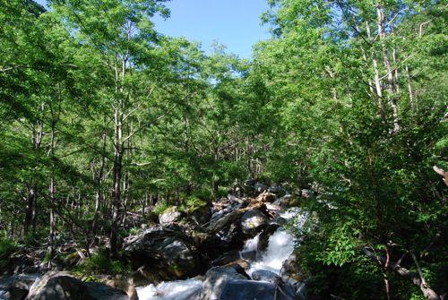 4南アルプスの天然水沢