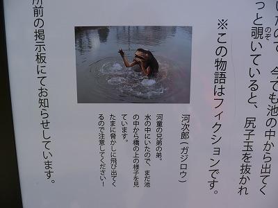 かっぱ1 (4)