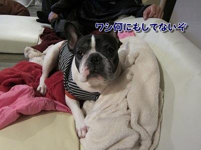 ぐちゃ (2)