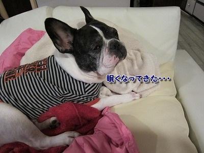 ぐちゃ (4)