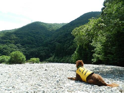 川遊び1 006