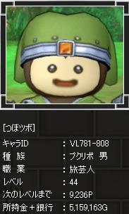 dq100-2.jpg