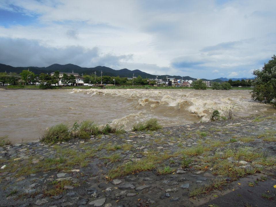 台風の後の桂川